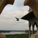 indien_reise5