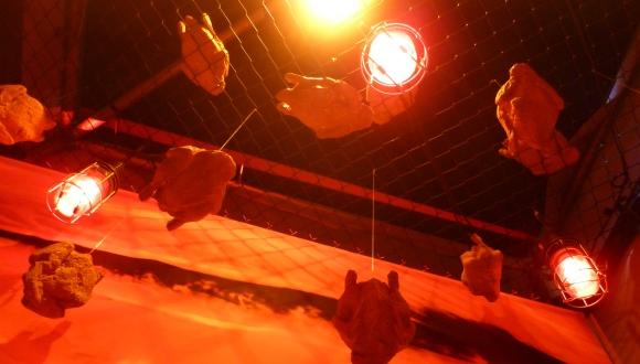 Gebratene Hühner schweben vom Himmel ... Schlaraffenland? Ganz bestimmt nicht.
